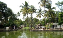 6.1 scenery from our boat in southern India