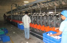 17.5 machines in spinning mill
