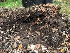 composted material in the inner core after removing bin