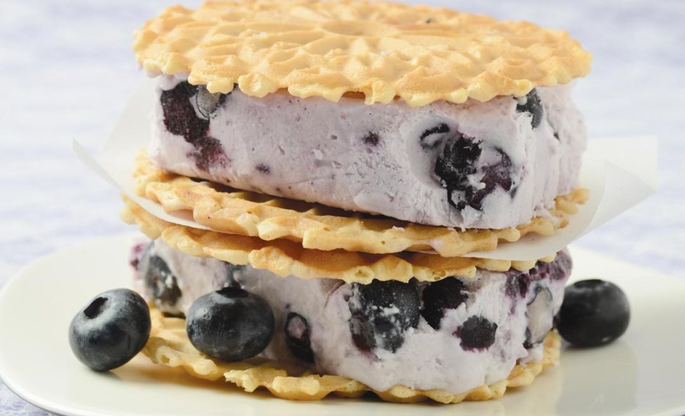 Blueberry and Chevre Semifreddo by Erin Bend