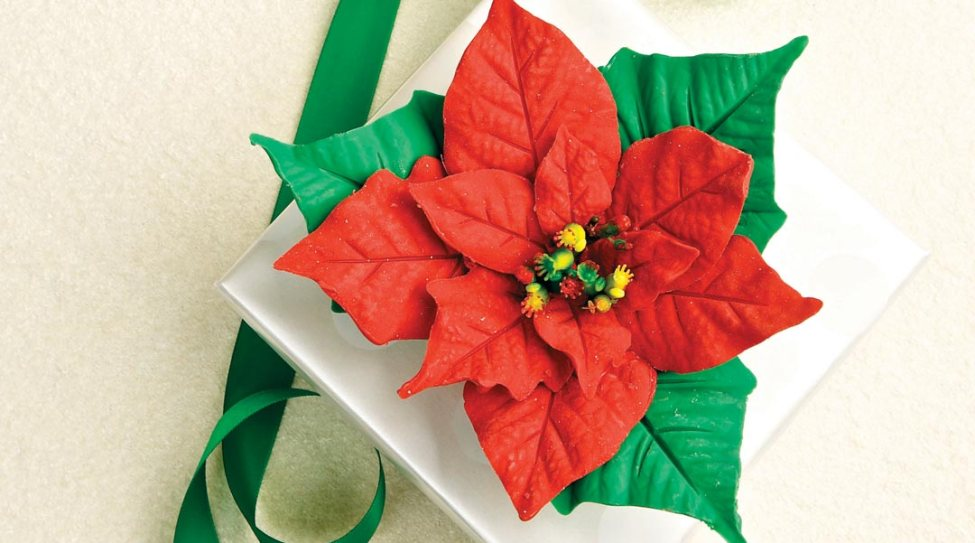 Chocolate Poinsettias by Chefs Doug Krahn and Betty Lai of Chocolate Zen Bakery