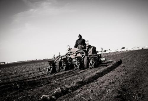 Historische Landwirtschaft