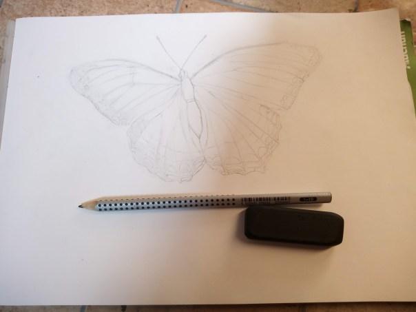 dessin-papillon-aquarelle