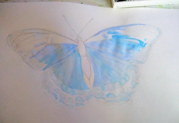 Papillon à l'aquarelle, première couche de bleu
