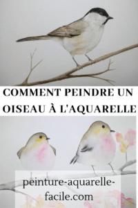 Oiseau à l'aquarelle pour Pinterest