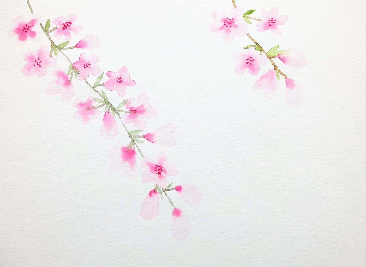 Peindre Des Fleurs De Cerisier à Laquarelle Peinture