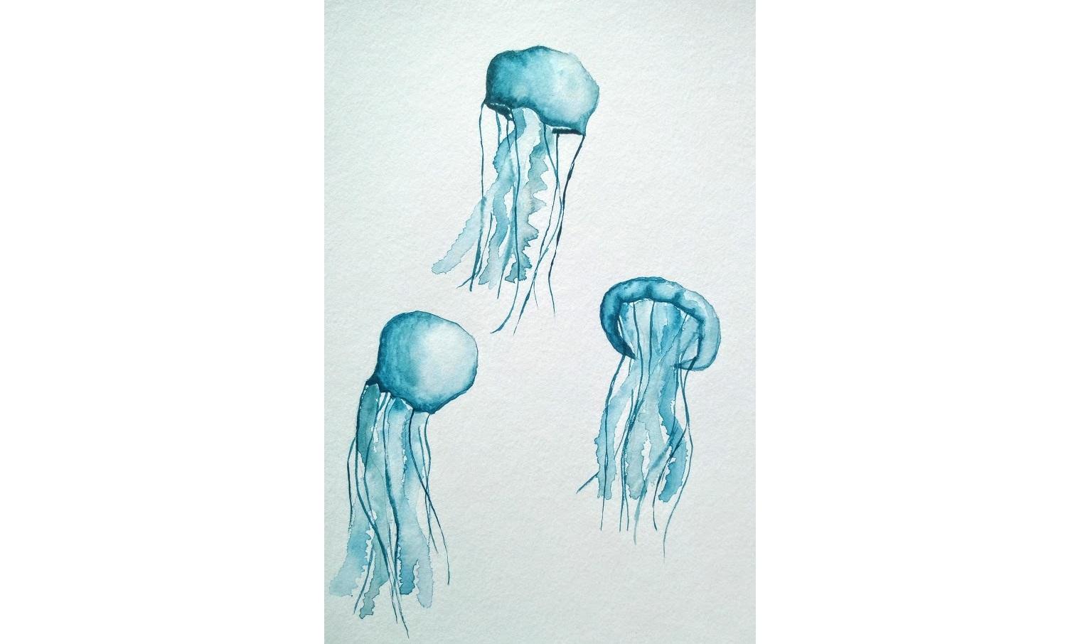 Des méduses à l'aquarelle pour débuter