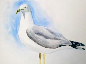 Mouette à l'aquarelle : un tutoriel pas à pas