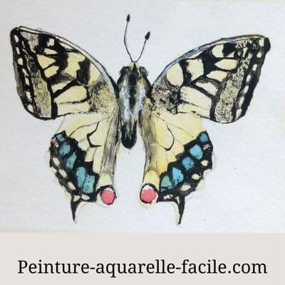 Un papillon aux ailes parfaitement symétriques