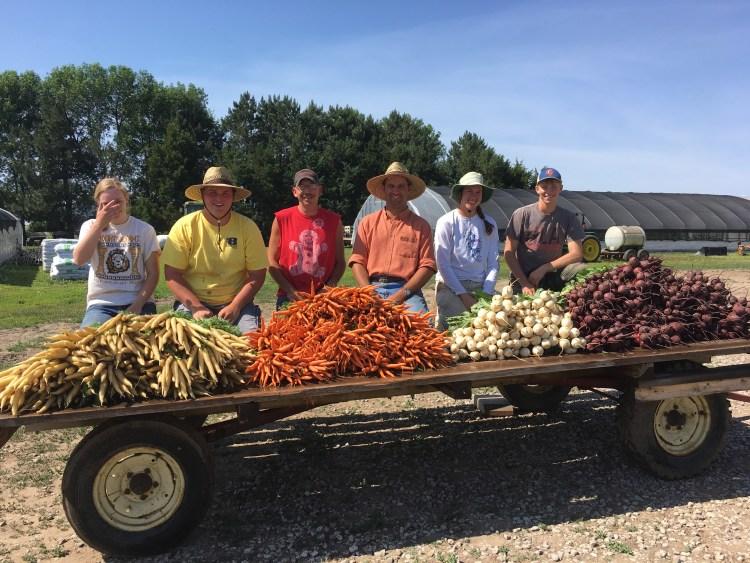 Harvest June 2017.JPG