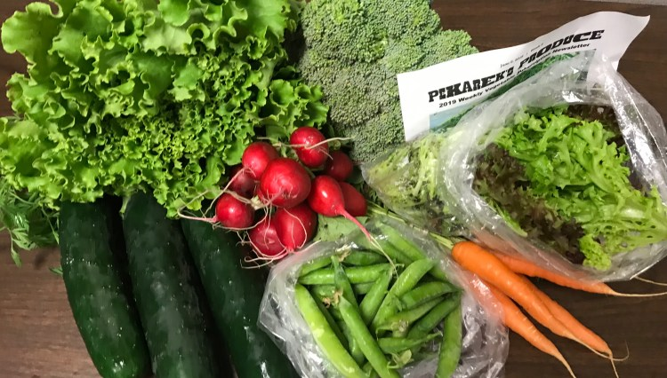 Weekly vegetable subscription week 2