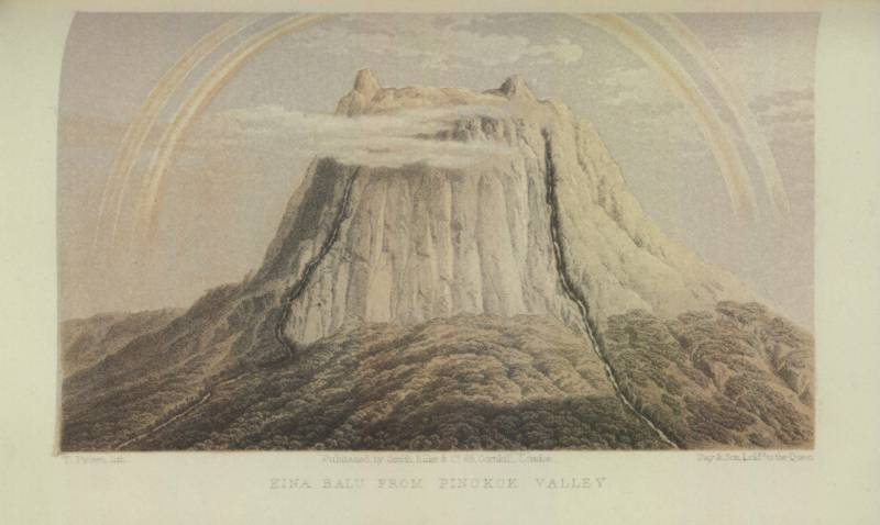Kina Balu from Pinokok Valley 1862