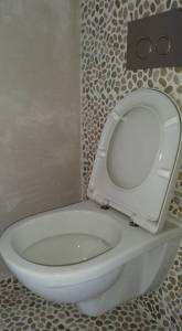 toilet renovatie particulier