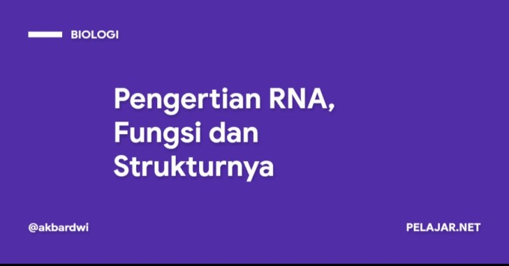 Pengertian RNA