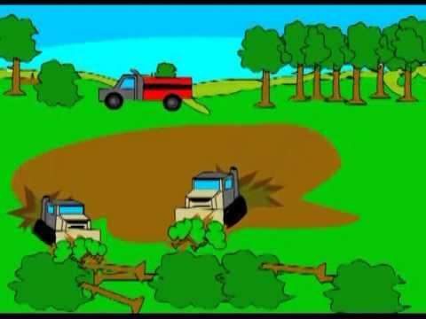 Penebangan Hutan secara Liar  pelajarankelas5sd