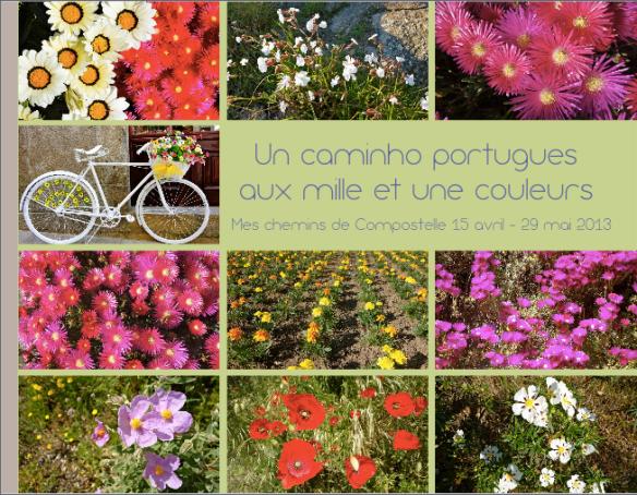Chemin portugais de Compostelle