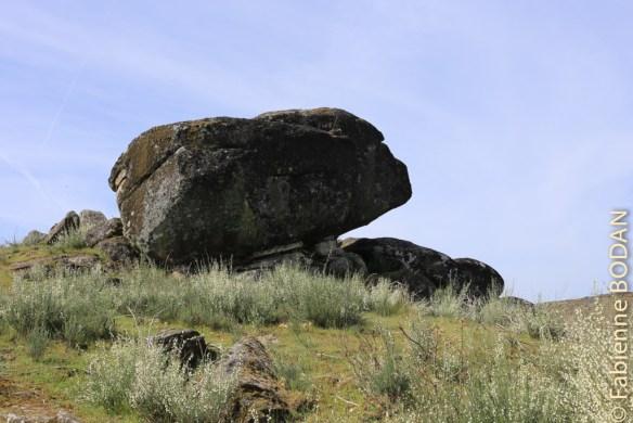 A nouveau les grosses pierres © Fabienne Bodan