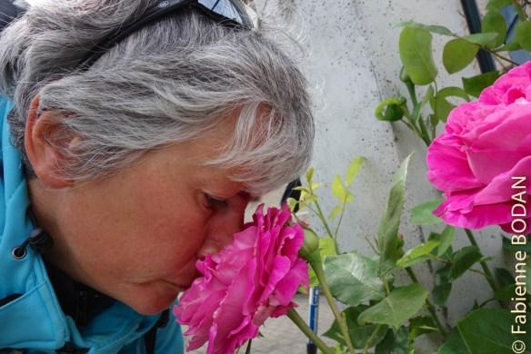 J'aime les roses, les fleurs et les couleurs en général. C'est pourquoi j'affectionne tout particulièrement les pérégrinations printanières. Et je ne peux m'empêcher de humer les odeurs délicates et enchanteresses des roses du chemin. © Fabienne Bodan
