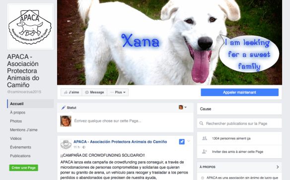 Capture d'écran de la page Facebook de l'association de protection des animaux du Camino