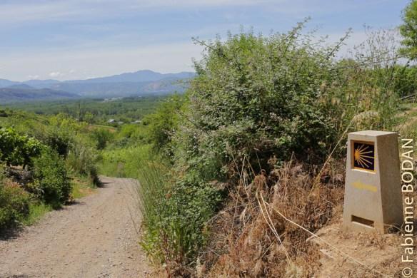 Camino del Invierno, dans le Bierzo