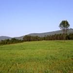 Camino del Invierno de Chantada à Rodeiro