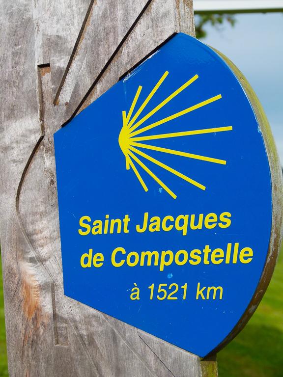 Coquille Saint-Jacques-de-Compostelle