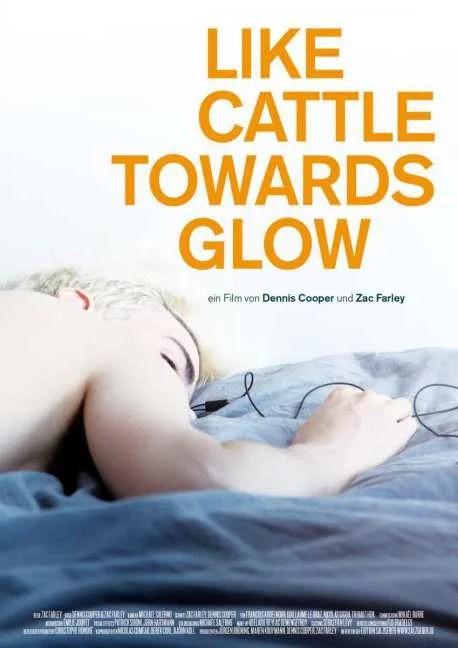 "VER ONLINE Y DESCARGAR PELICULA ""Like Cattle Towards Glow"""