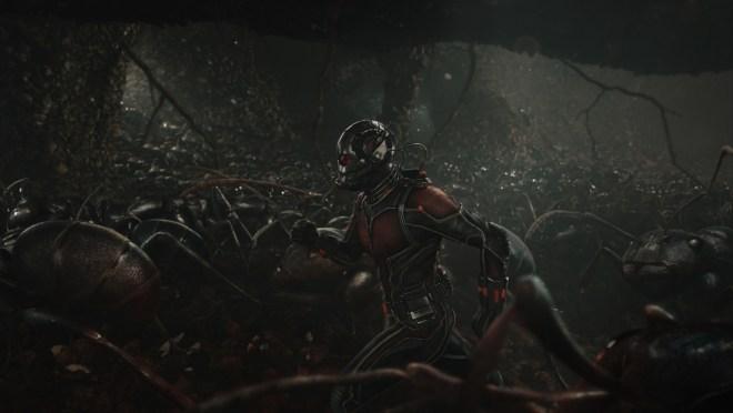 Marvel's Ant-Man..Scott Lang/Ant-Man (Paul Rudd) amongst his ants...Photo Credit: Film Frame..? Marvel 2015
