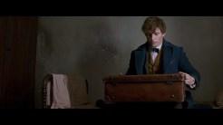 Fantastic Beasts 07