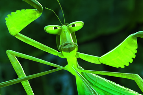 Mantis voiced by Seth Rogen in KUNG FU PANDA 3