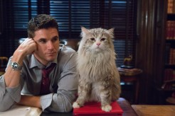 """M118 Robbie Amell and Mr. Fuzzypants tar in EuropaCorp's """"NINE LIVESÓ. Photo Credit: Takashi Seida © 2016 EuropaCorp"""