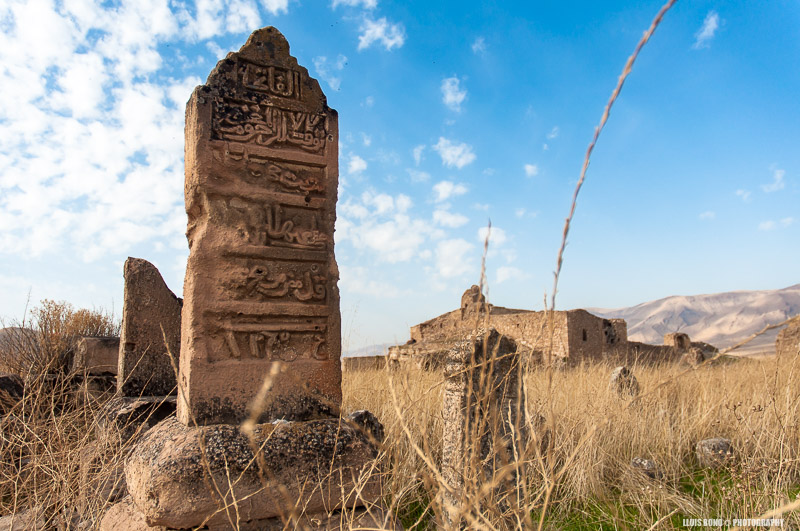 Antigues tombes a Hasankeyf
