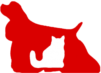 Peluquería Canina Móvil Zazú