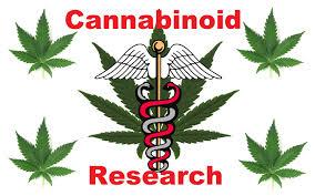 srp-blog-cannabinoid