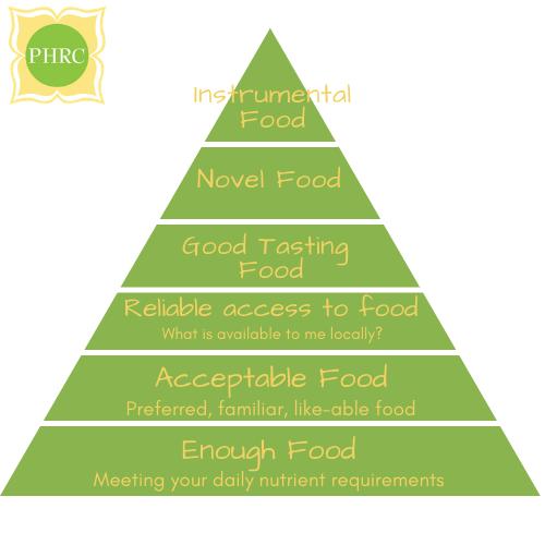 Hierarchy of Food Pyramid