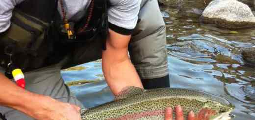 Fly fishing in Whistler BC Canada