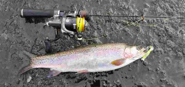 Ice fishing BC