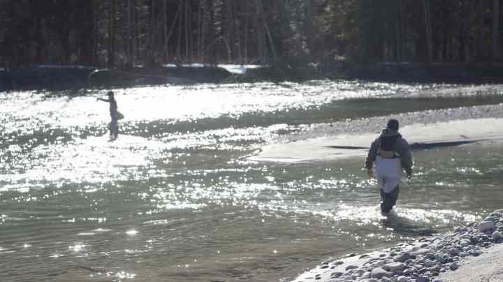 Fly fishing Whistler BC