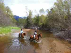 Horseback-riding-in-Pemberton-Bc