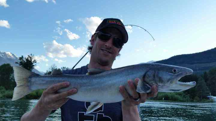 Anderson lake Bull Trout