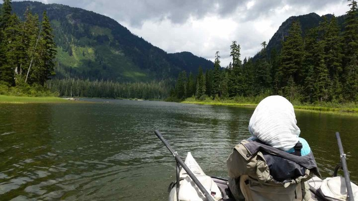 Fly fishing in Whistler