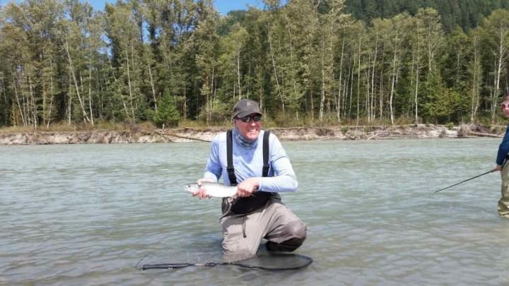 Pink Salmon fly fishing Squamish BC