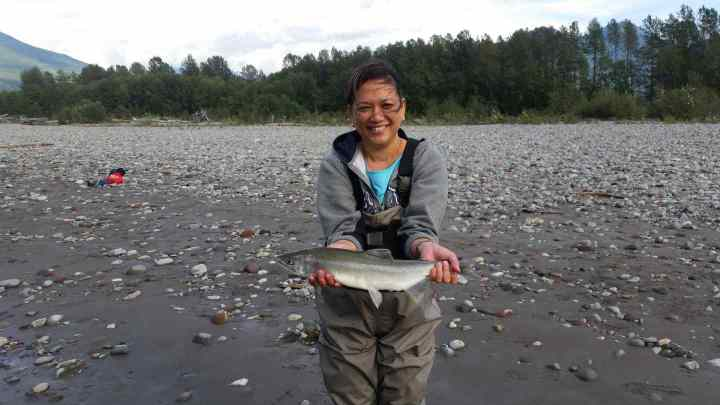 Fly fishing for Pink Salmon in BC
