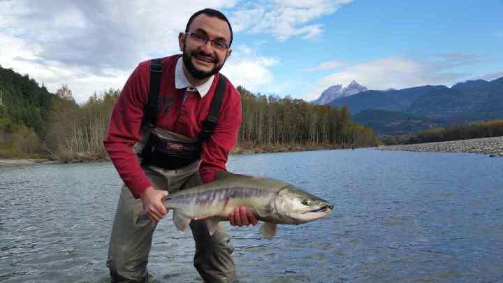 Chum Salmon fishing Squamish BC