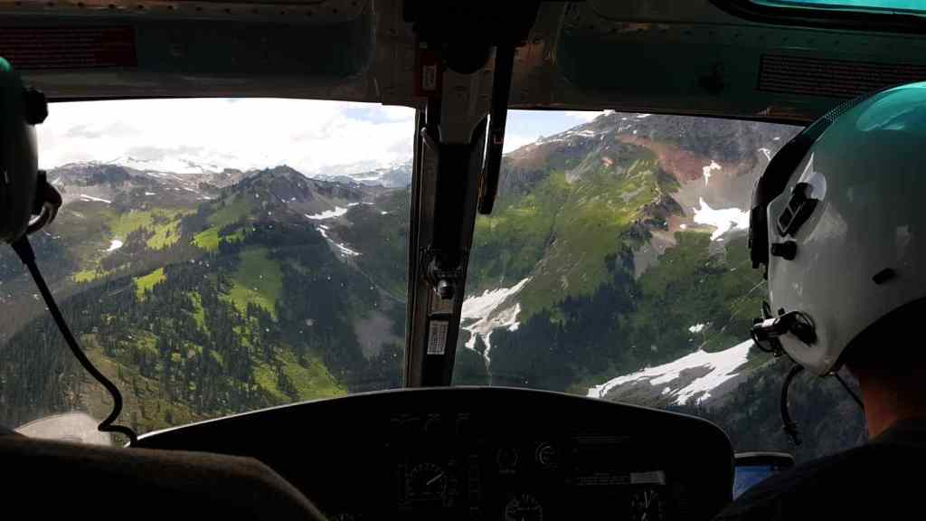 Viewing Alpine Meadows from a Helicopter