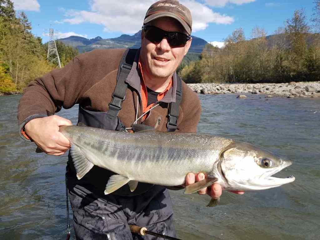 Chrome Chum Salmon fly fishing in Squamish BC