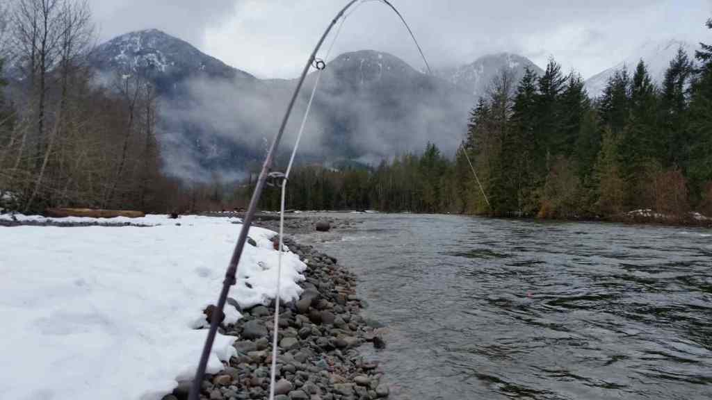 Fly fishing Rivers in Squamish