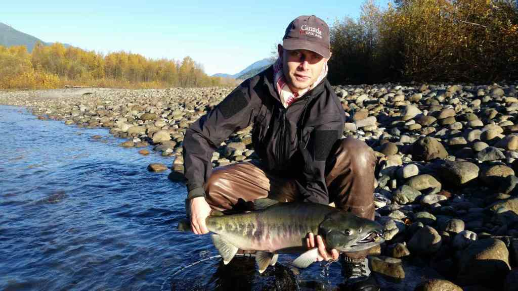 BC Chum Salmon fly fishing