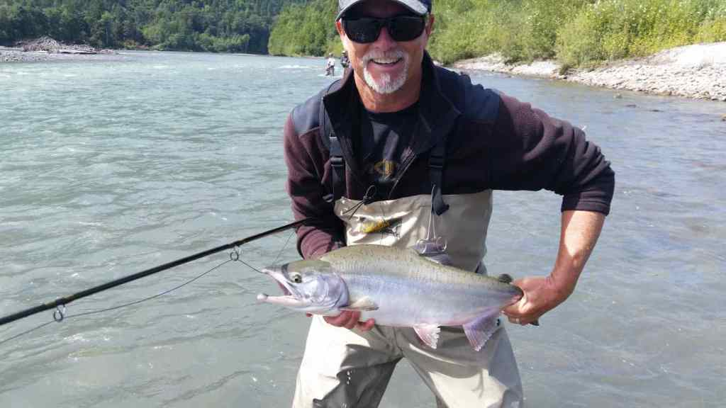 Pink Salmon Fly Fishing in Squamish BC Canada