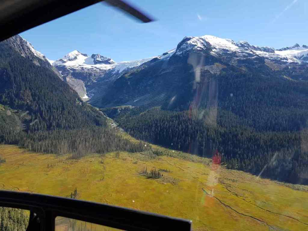 fly over an alpine meadow in Canada